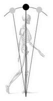 Description: walkingskeleton_pendulum.jpg